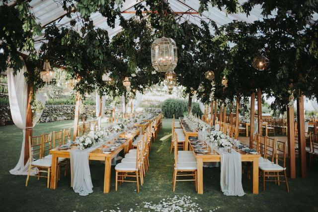 Long wooden tables and chairs under marquee with hanging green foliage