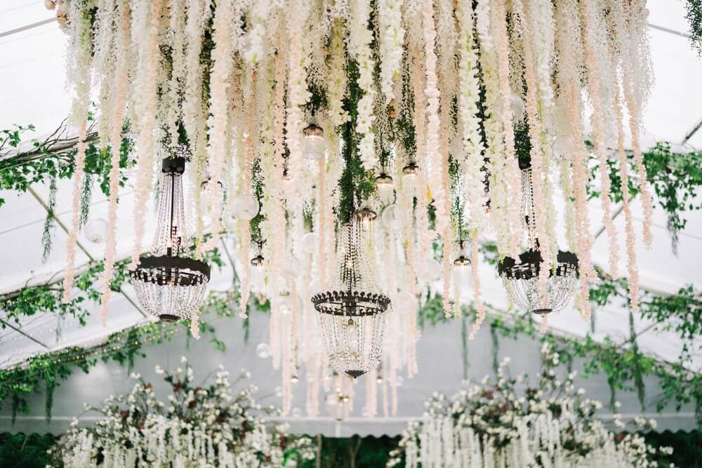 White wisteria flowers and orchids dedcending from a clear wedding marquee